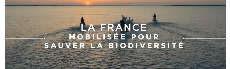 Consultation des acteurs de la Normandie pour l'élaboration de la stratégie nationale biodiversité (SNB)